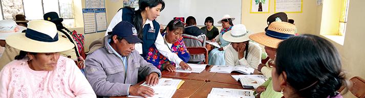 ASESORÍA A INSTITUCIONES U ORGANIZACIONES